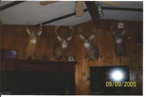 The Mitchell Bucks proudly displayed in their living room.