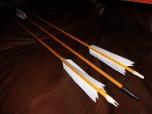 Custom Arrows Included
