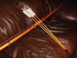 Medicine Bow with Arrows